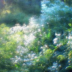 "photo ""summer turbulence"""
