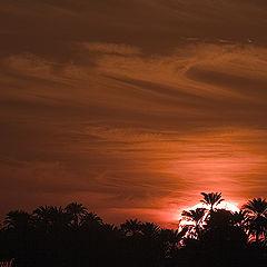 "фото ""Sunset over Luxor"""