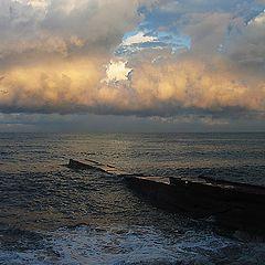 """photo """"Dawn"""""""
