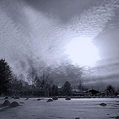 "фото ""Winter light"""