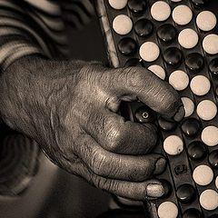 "фото ""Мелодия для старого баяна."""