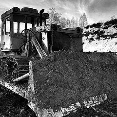 "photo ""Portrait of buldozer"""