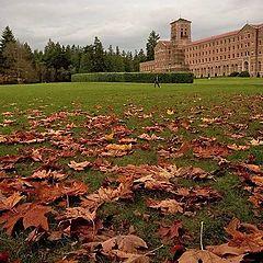"""фото """"Fall Quarter, end of"""""""