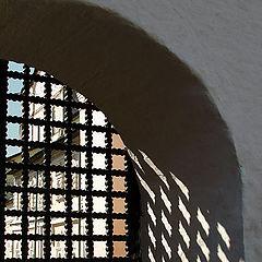 "photo ""Life behind a lattice"""