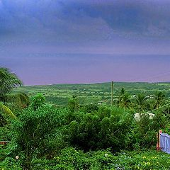 """фото """"View from our yard"""""""