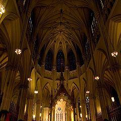 """фото """"St. Patrick`s Cathedral"""""""