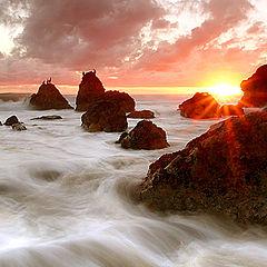"""фото """"El Matador Beach"""""""