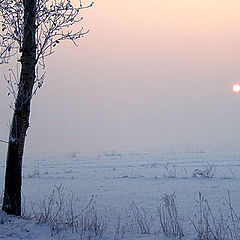 "фото ""The Winter"""