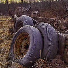 """фото """"Old tyres"""""""