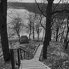 "фото ""Snowy stairs"""