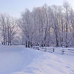 "photo ""the winter"""