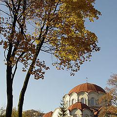 """фото """"Новодевичий. Осень."""""""