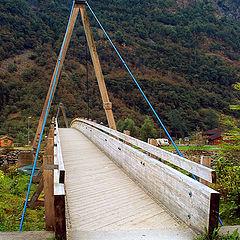 """photo """"Bridge"""""""