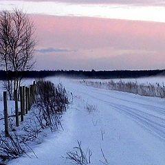 """фото """"The winter fog"""""""