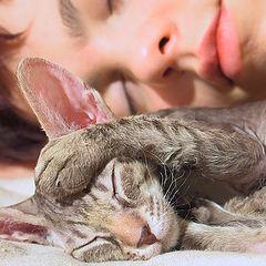 "фото ""Sleeping"""