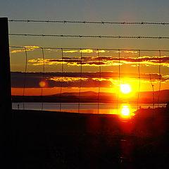 """фото """"sun to the ..."""""""