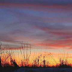 """photo """"Fence at Sunset"""""""