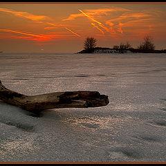 """фото """"В начале февраля"""""""