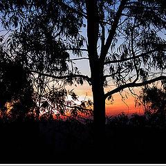 "photo ""Sunset at Lindoia"""