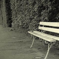 "фото ""Bench of memories"""