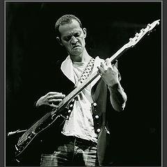 "фото ""Bass`o`Nova #2"""