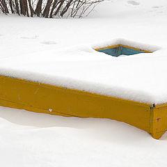 "фото ""colors of winter"""