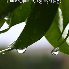 "фото ""Once Upon A Rainy Day !"""