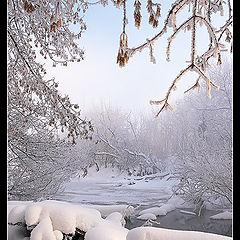 """photo """"February morning"""""""