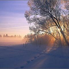 """фото """"Утренние кружева..."""""""