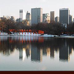 "фото ""New York - ""The Gates"" by Christo"""