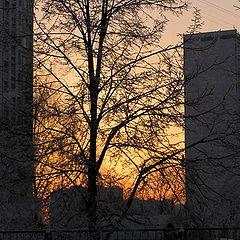 "фото ""Зима...Закат..."""