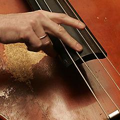 "фото ""double bass"""