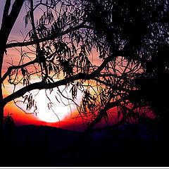 "photo ""Lindoia Sunset #2"""