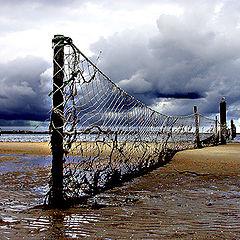 """фото """"Old net"""""""