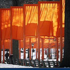 """фото """"NY Central Park """"The Gates"""""""""""