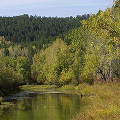 """photo """"Timber lake"""""""