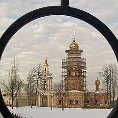 "фото ""Взгляд через ограду"""