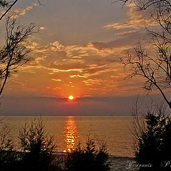 "фотоальбом ""Sunset"""