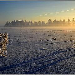 """фото """"Утренний пейзаж"""""""
