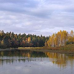 """photo """"Autumn paints"""""""