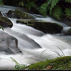 """photo """"Water stream"""""""