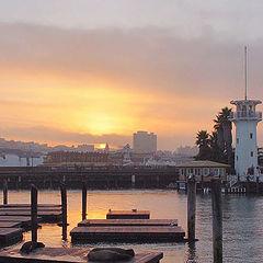 "photo ""Sea Lions at Sunset"""