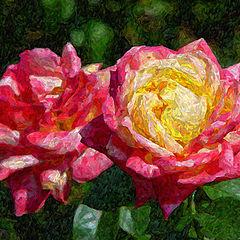 """фото """"Roses"""""""