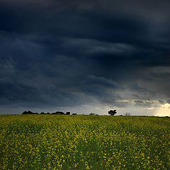 "photo ""Shortly before the storm"""