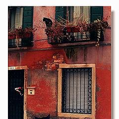 """photo """"Romeo and Juliet"""""""