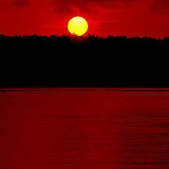 """фото """"Red sea"""""""