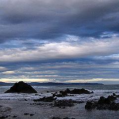 "photo ""morning sea"""