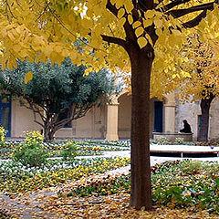 "фотоальбом ""autumn"""