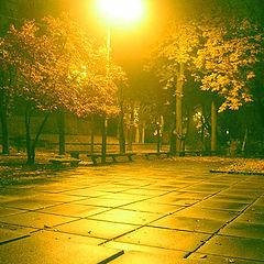 """фото """"Парк ночью"""""""