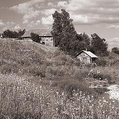 "photo ""Country vista"""